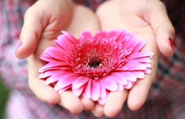 Fiore in mano intimità femminile